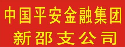 中国平安综合金融集团新邵支公司-郴州招聘
